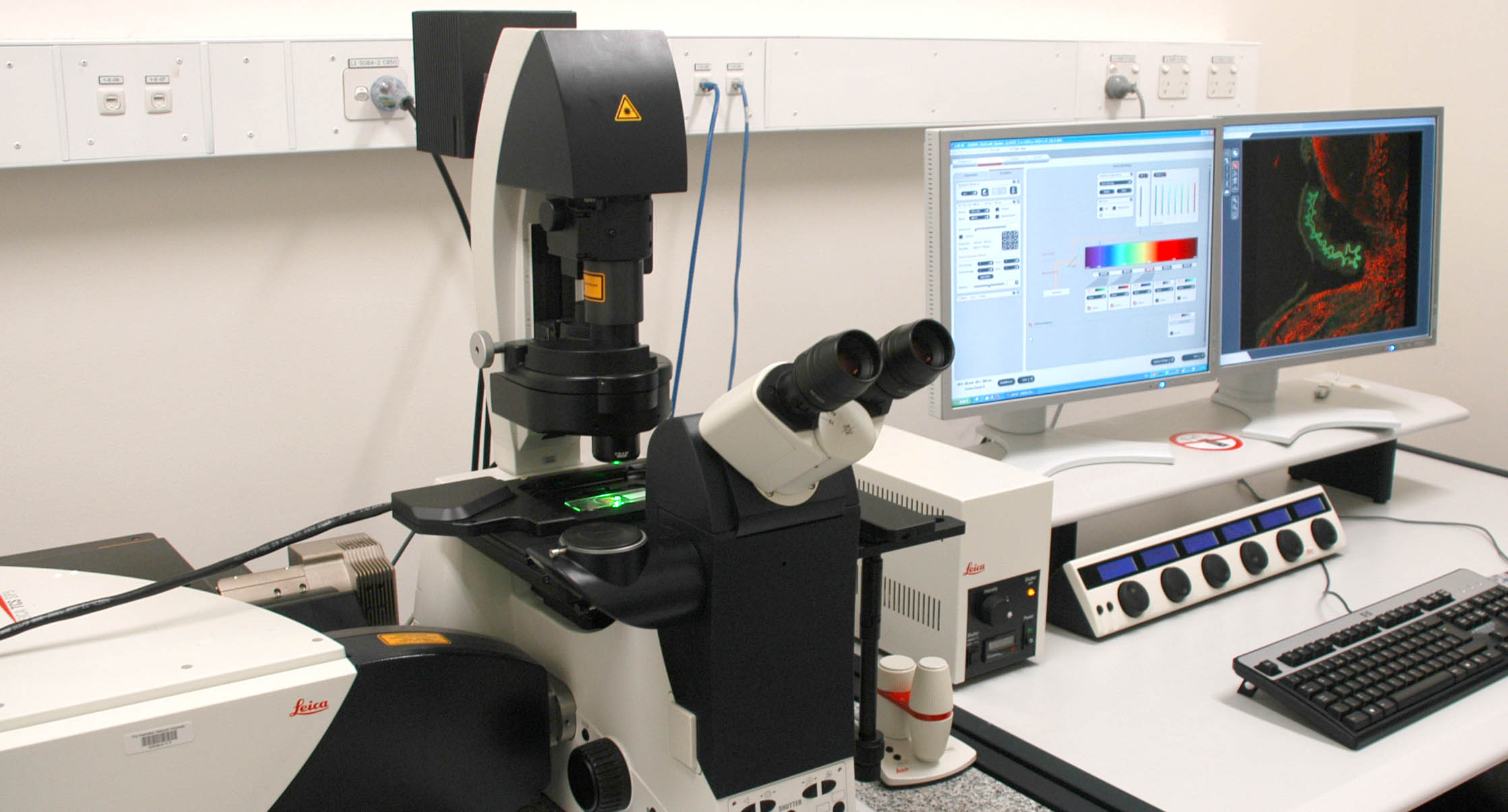 Cached 2 photon confocal microscopy