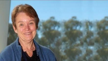 Professor Angela Dulhunty - Profile