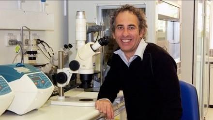 Professor Matthew Cook - Profile