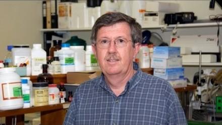 Professor Phil Board - Profile
